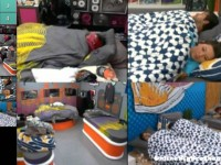 Big-Brother-14-live-feeds-september-8-2012-1112am