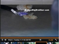 Big-Brother-15-july-16-2013-1117am