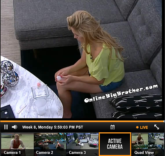 Big-Brother-15-Feeds-21