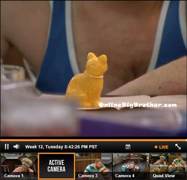 Big-Brother-15-live-feeds-september-17-2013-843pm