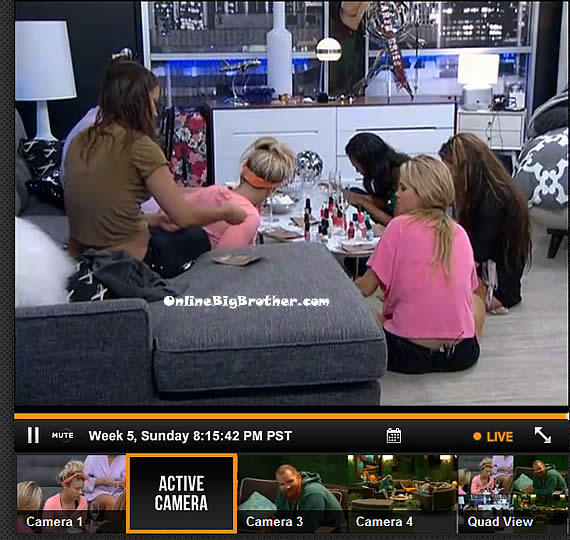 Big-Brother-15-Feeds-33