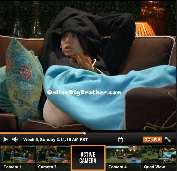Big-Brother-15-july-28-2013-314am