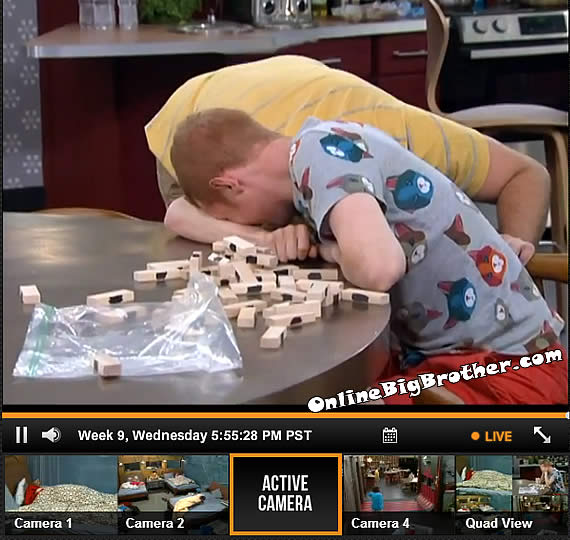 Big-Brother-15-Feeds-7