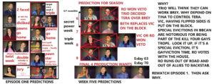 bbcan9 FINAL 4 PREDICTION.jpg